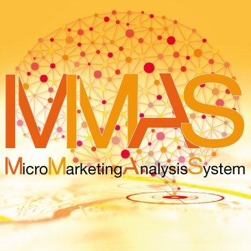 MMAS-Micro Marketing Analysis System-Datenbanken-Geomarketing-CRM-MeTKla-B2B-B2C