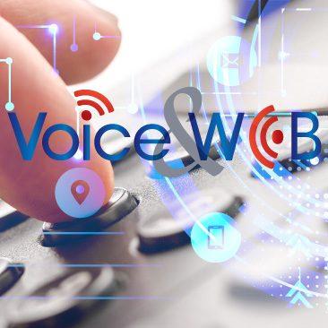 VoiceAndWeb-MeTKla-CRM-Kundenbetreuung-Kontaktcenteraktivitäten-B2B-B2C
